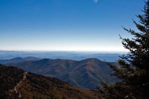 Mount Mitchell State Park, Blue Ridge Parkway, NC. Photo: ©2010 Kolin Toney