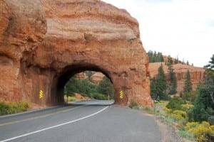 Red Canyon, Scenic Byway 12, UT. Photo: Jessica Dungan